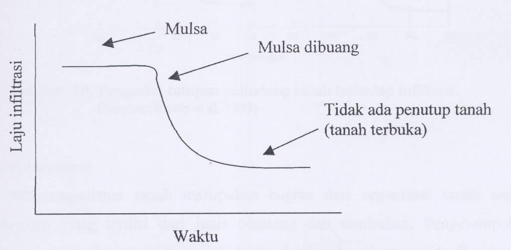 Gambar 9. Laju infiltrasi pada saat ada mulsa dan setelah mulsa dibuang